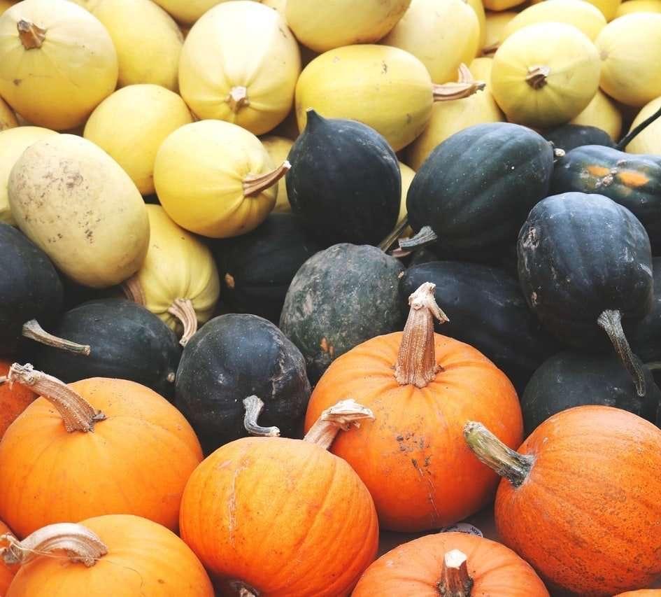 Idées recettes de saison pour novembre